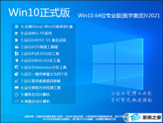 Win10专业版 64位永久激活版本 V2021.02