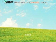 雨林木风 Win10 64位  v2021.06 专业版(2004)
